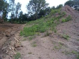 Undisturbed pile and start of borrow pit